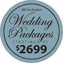 minneapolis wedding photogaphy pricing